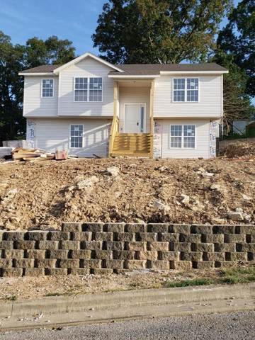 Tbd Bethany Lane Lot 236, Branson West, MO 65737 (MLS #60178490) :: Sue Carter Real Estate Group
