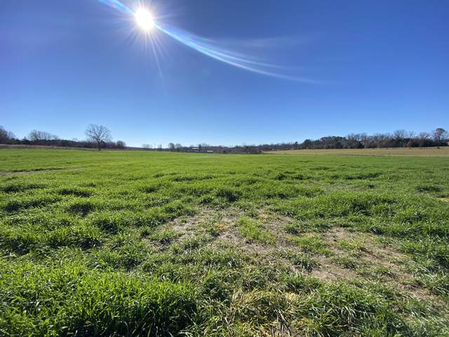 Tbd County Road 7110, West Plains, MO 65775 (MLS #60178540) :: Team Real Estate - Springfield