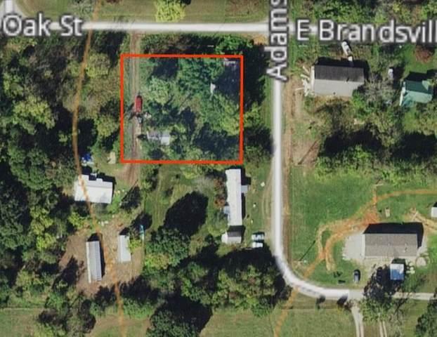 208 E Oak Street, Brandsville, MO 65688 (MLS #60178551) :: Winans - Lee Team | Keller Williams Tri-Lakes