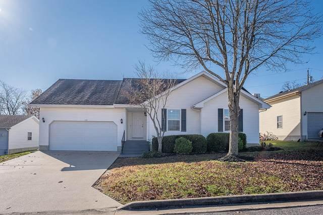 131 Primrose Lane, Branson, MO 65616 (MLS #60178589) :: Sue Carter Real Estate Group