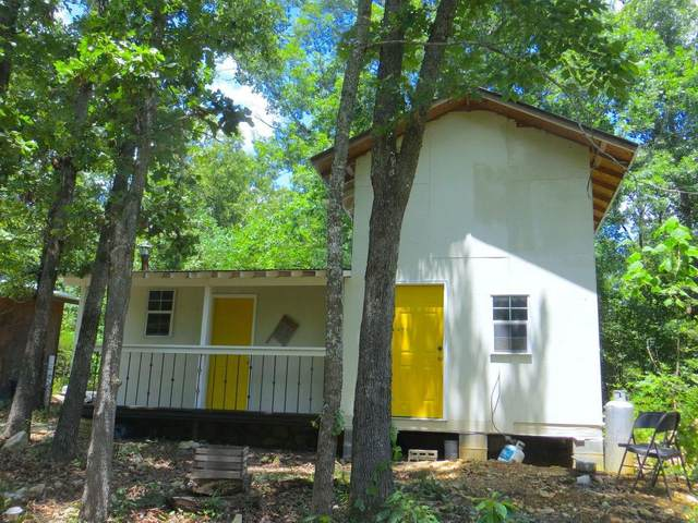 2964 County Road 250, Myrtle, MO 65778 (MLS #60178596) :: Team Real Estate - Springfield