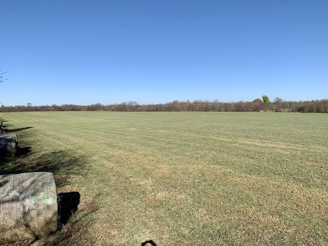 000 S Farm Road 71, Republic, MO 65738 (MLS #60178661) :: The Real Estate Riders