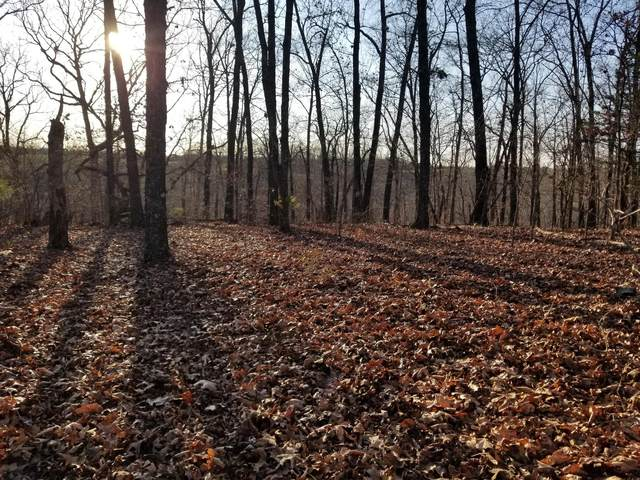 Lot 8 Sherwood Lane, Saddlebrooke, MO 65630 (MLS #60178847) :: United Country Real Estate
