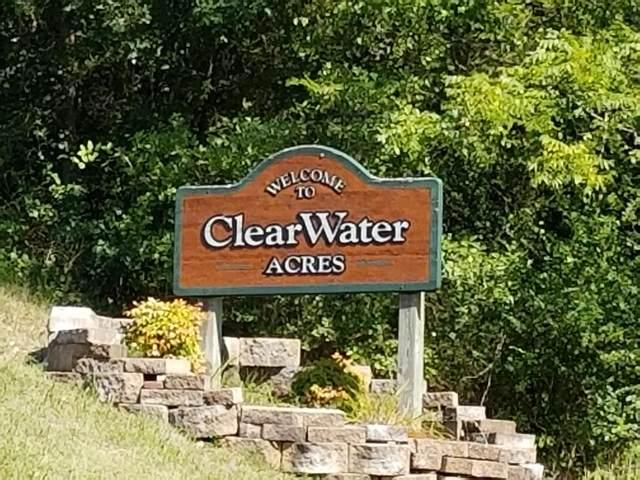 000 Lot 31 Cove Lane & Edgewater Circle, Ridgedale, MO 65739 (MLS #60178878) :: Tucker Real Estate Group | EXP Realty