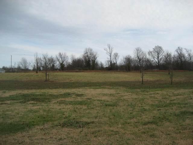 11079 Hillside Lane, Neosho, MO 64850 (MLS #60178946) :: Sue Carter Real Estate Group