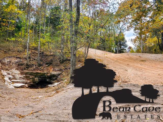 Lot 7 Bear Cave Estates, Marionville, MO 65705 (MLS #60178976) :: The Real Estate Riders