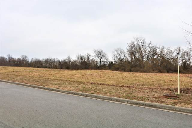 920 N Lindsey North Avenue, Republic, MO 65738 (MLS #60178998) :: Sue Carter Real Estate Group