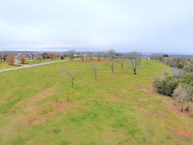 Lot 19 Old Well Lane, Kirbyville, MO 65679 (MLS #60179012) :: The Real Estate Riders