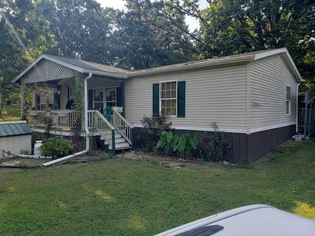 22825 Elderberry Drive, Summersville, MO 65571 (MLS #60179040) :: Evan's Group LLC
