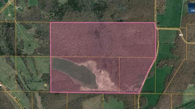 000-B King Davis Drive, Hartville, MO 65667 (MLS #60179046) :: Sue Carter Real Estate Group
