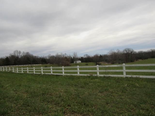 36041 Us-54, Preston, MO 65732 (MLS #60179070) :: Sue Carter Real Estate Group