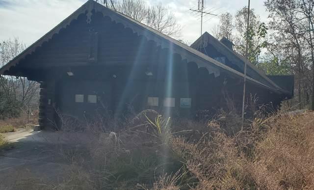 106 Surkey Toot Lane, Lampe, MO 65681 (MLS #60179074) :: Team Real Estate - Springfield
