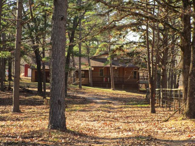 1909 Jacks Fork Road, Summersville, MO 65571 (MLS #60179222) :: The Real Estate Riders