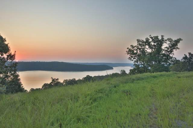 000 Aleah Court, Mountain Home, AR 72653 (MLS #60179234) :: United Country Real Estate