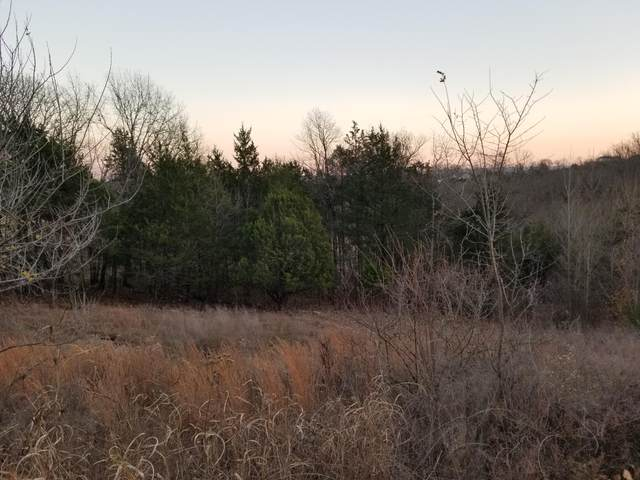 Lot 5 Pebble Beach Drive, Branson, MO 65616 (MLS #60179306) :: Sue Carter Real Estate Group