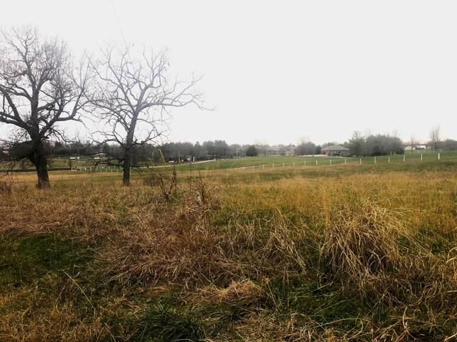 Tbd E Cardinal Road, Ozark, MO 65721 (MLS #60179387) :: Winans - Lee Team | Keller Williams Tri-Lakes