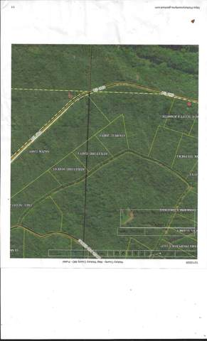 000 Dogwood Circle, Hermitage, MO 65668 (MLS #60179593) :: Team Real Estate - Springfield