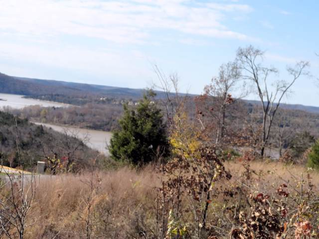 3 Lots Hanging Branch Rdg, Cape Fair, MO 65624 (MLS #60179660) :: Clay & Clay Real Estate Team