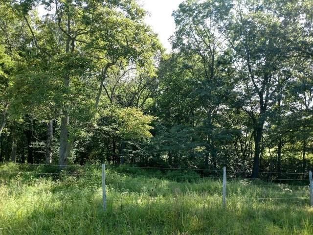 000 State Highway Ee, Highlandville, MO 65669 (MLS #60179680) :: Sue Carter Real Estate Group