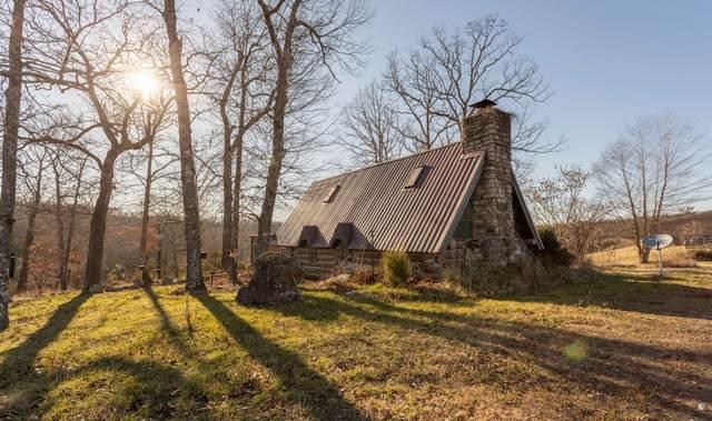 675 Someday Lane, Cedar Creek, MO 65627 (MLS #60179910) :: United Country Real Estate