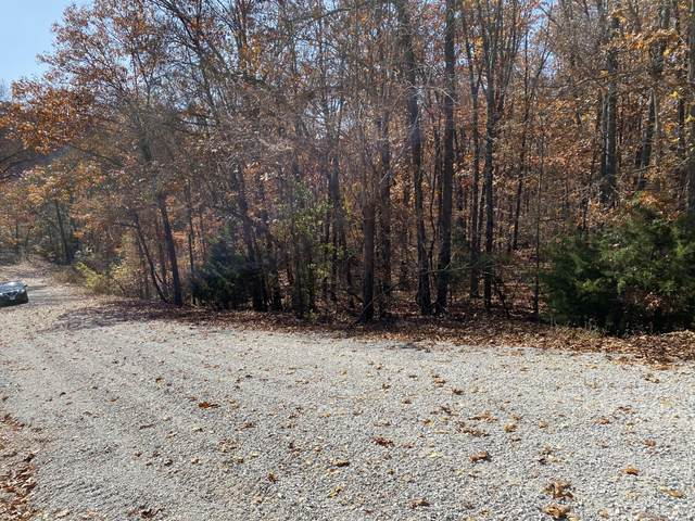 Tbd Mulberry Lane, Ridgedale, MO 65739 (MLS #60180052) :: The Real Estate Riders