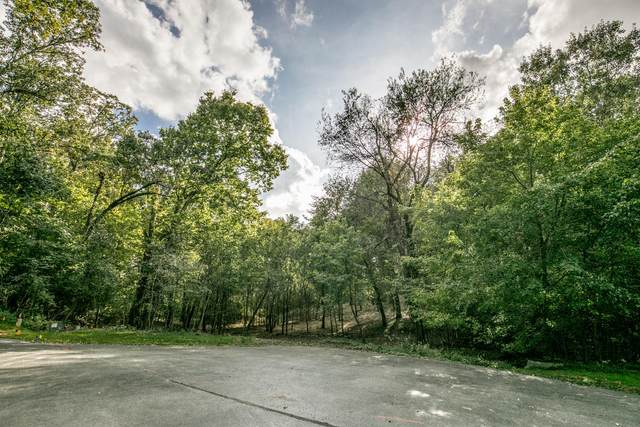 Lot 3 S Augusta Drive, Springfield, MO 65809 (MLS #60180121) :: The Real Estate Riders