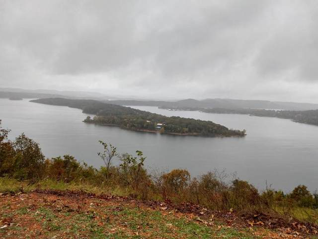 000 Cliffside Drive (Lot 3) 1.41 A Fabulous Lakevi, Galena, MO 65656 (MLS #60180161) :: Clay & Clay Real Estate Team