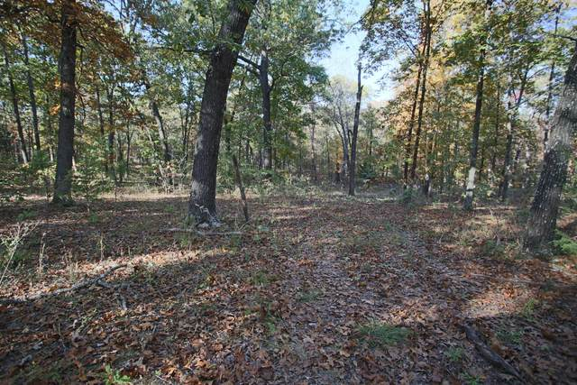 000 Cambridge, West Plains, MO 65775 (MLS #60180752) :: Clay & Clay Real Estate Team