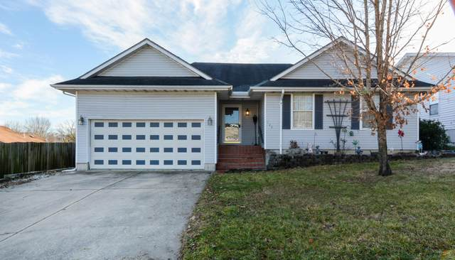 123 Primrose Lane, Branson, MO 65616 (MLS #60180873) :: Team Real Estate - Springfield