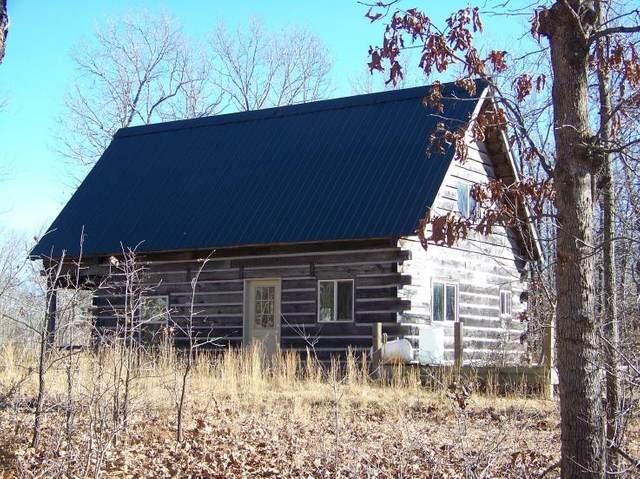 000 Freda Lane, Brixey, MO 65618 (MLS #60181115) :: Clay & Clay Real Estate Team