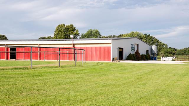 6082 E State Highway C, Strafford, MO 65757 (MLS #60181372) :: The Real Estate Riders