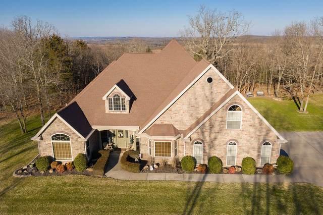 170 Windy Ridge Drive, Hollister, MO 65672 (MLS #60181476) :: Team Real Estate - Springfield