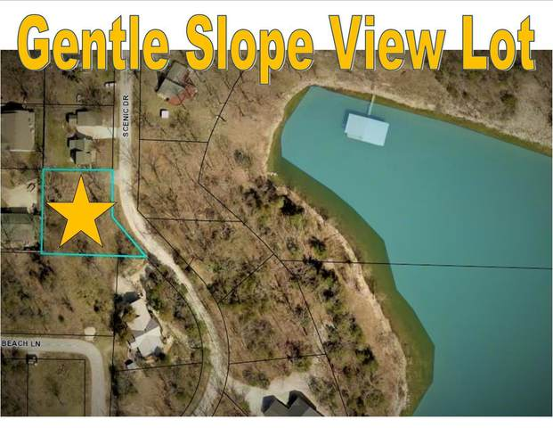 282 Scenic Drive, Hollister, MO 65672 (MLS #60181553) :: Team Real Estate - Springfield