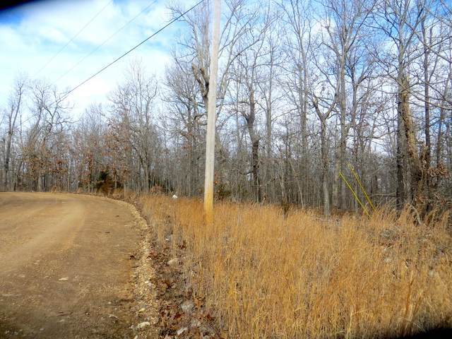 Lot 4 Needles Eye Lane, Mammoth Spring, AR 72554 (MLS #60181724) :: Team Real Estate - Springfield