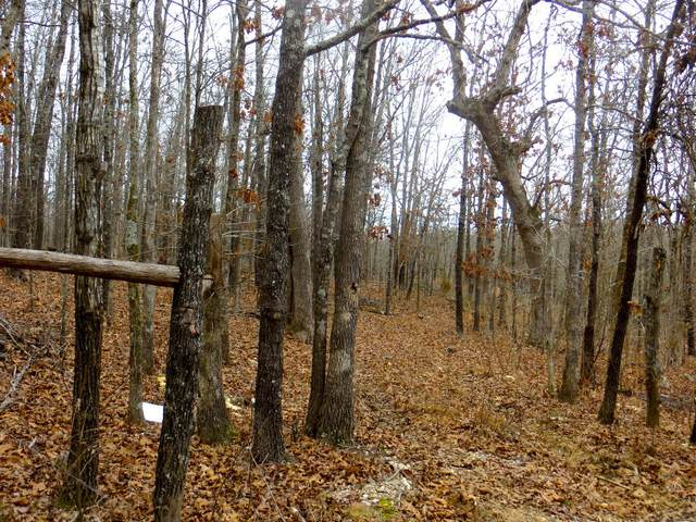 000 Private Rd Off Hwy 63, Mammoth Spring, AR 72554 (MLS #60181748) :: Team Real Estate - Springfield