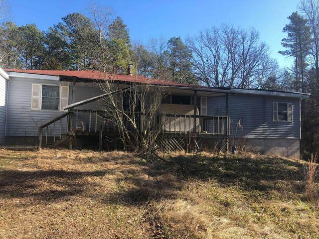 8170 Old Highway 60, Birch Tree, MO 65438 (MLS #60181761) :: Team Real Estate - Springfield