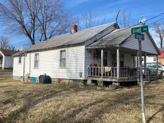 201 Solomon, Ava, MO 65608 (MLS #60181891) :: Team Real Estate - Springfield