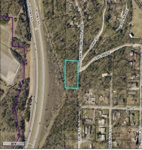 000 N Esplanade Street, Hollister, MO 65672 (MLS #60181910) :: Team Real Estate - Springfield