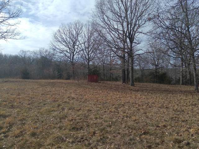 000 County Road 330, Dora, MO 65637 (MLS #60181926) :: United Country Real Estate