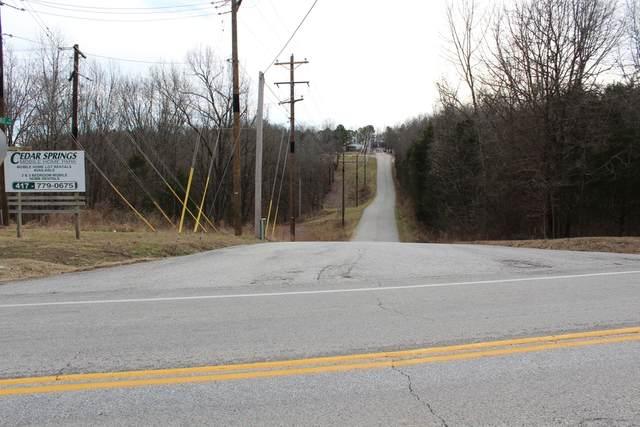 217 S Lake Drive, Blue Eye, MO 65611 (MLS #60181932) :: Clay & Clay Real Estate Team