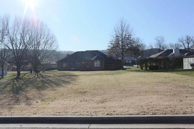141 Avon Lane, Branson, MO 65616 (MLS #60181963) :: Winans - Lee Team | Keller Williams Tri-Lakes
