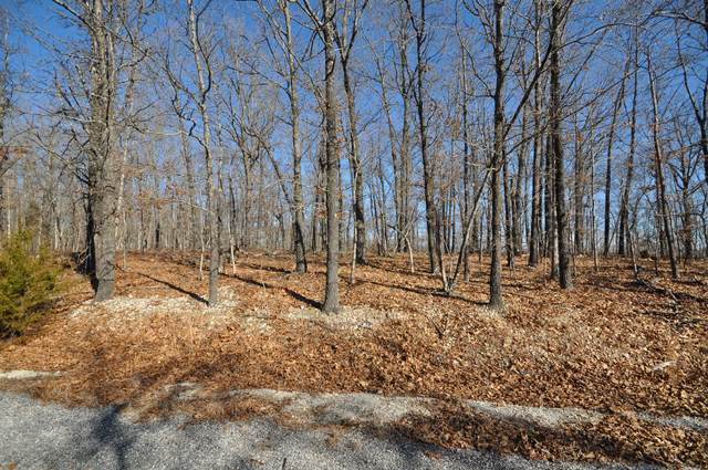 Tbd Lot28 Palomino Drive, Highlandville, MO 65669 (MLS #60182103) :: United Country Real Estate