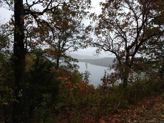 000 Cliffside Drive (Lot 2) Well & Septic, Galena, MO 65656 (MLS #60182112) :: Winans - Lee Team | Keller Williams Tri-Lakes