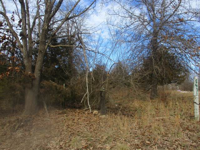 5471 County Road 1820, West Plains, MO 65775 (MLS #60182131) :: Team Real Estate - Springfield