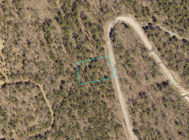 Lot 254 Pomme De Terrace Road, Branson, MO 65616 (MLS #60182207) :: Clay & Clay Real Estate Team