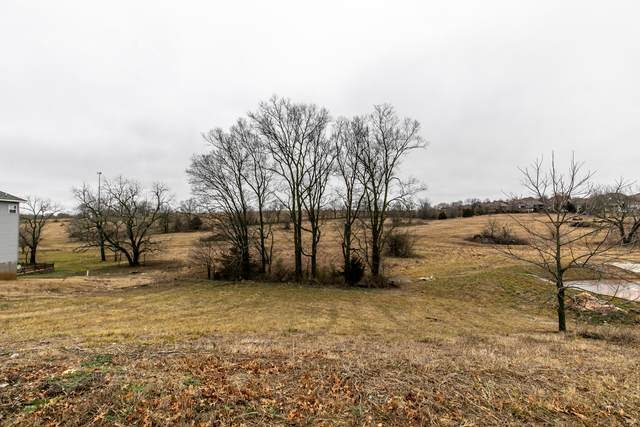 2111 N Bradbury Lane, Ozark, MO 65721 (MLS #60182306) :: Evan's Group LLC