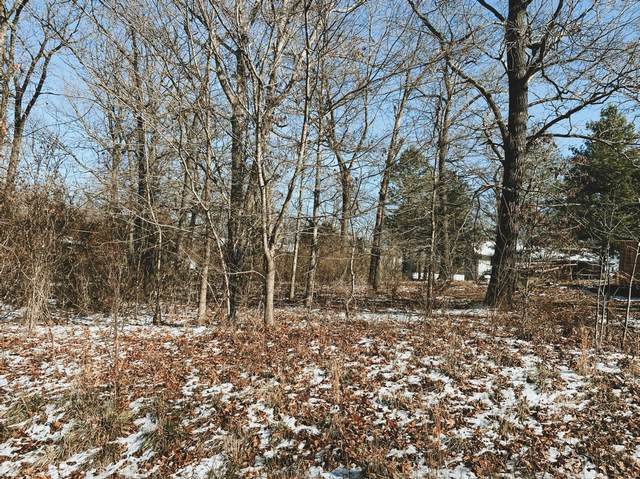 000 Ginger Drive Lot 6, West Plains, MO 65775 (MLS #60182446) :: The Real Estate Riders
