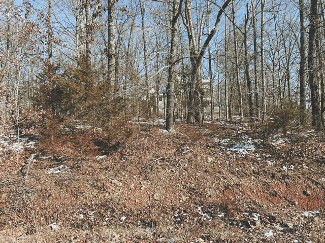 000 Lot 1 Block 13 Morrison Sub, West Plains, MO 65775 (MLS #60182490) :: Tucker Real Estate Group | EXP Realty