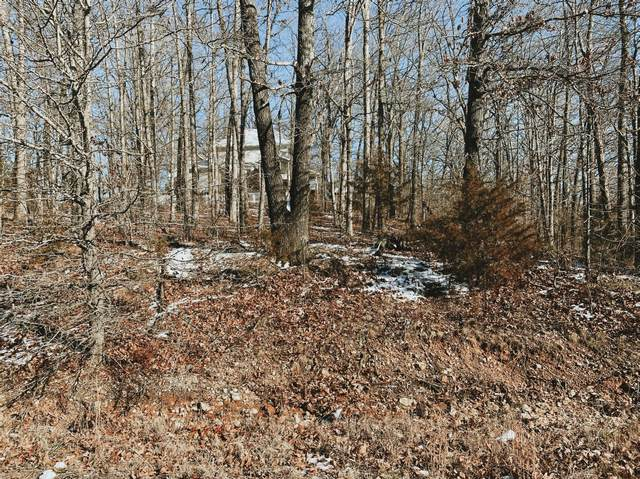 000 Lot 4 Block 13 Morrison Sub, West Plains, MO 65775 (MLS #60182495) :: Winans - Lee Team | Keller Williams Tri-Lakes