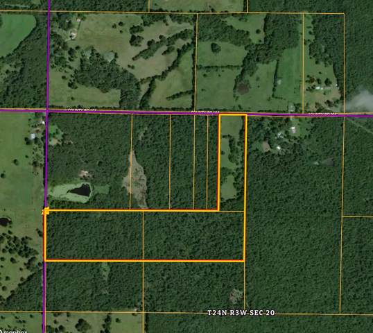 000 County Road 102, Alton, MO 65606 (MLS #60182510) :: United Country Real Estate